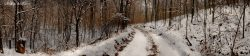 wintry-road-less-taken-mrgclrproconbrlwrmlvlsconmbrtm-dscf2025cpyrt-2